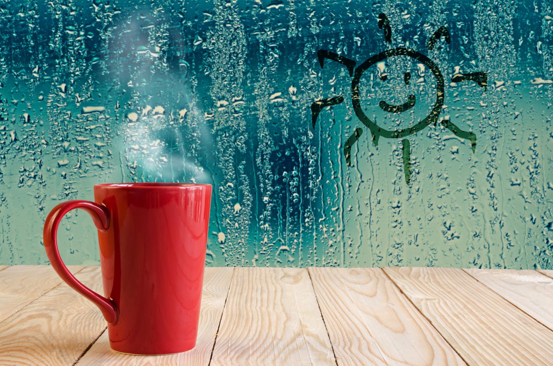 C mo evitar la condensaci n en mis ventanas ibarra ventanas - Como evitar la condensacion ...